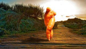 carota semi umana che cammina